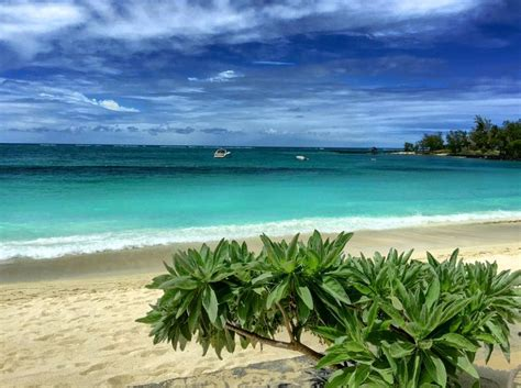 Staying at Belle Mare Plage, Mauritius   Mare, Beach