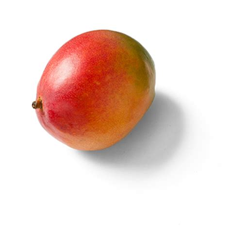 Who discovered Mangos? Under what circumstances did they