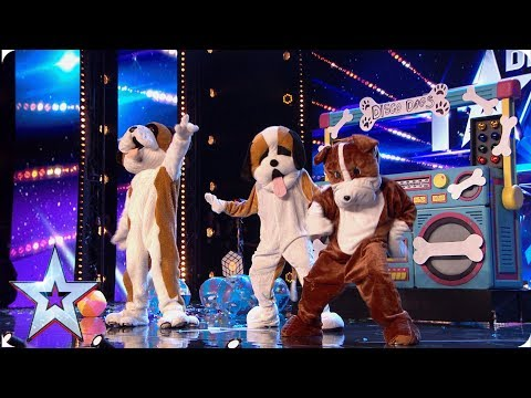 Britain's Got Talent 2019: when does it start? Are Ant and