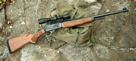 Best Rifles | 40 Best Rifles Perfect For Hunting Season