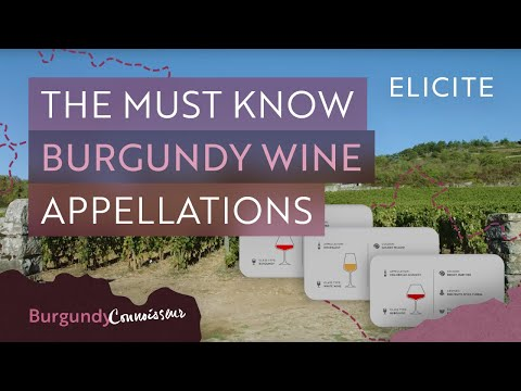 Burgundy: The Wine Equivalent to Dungeons and Dragons