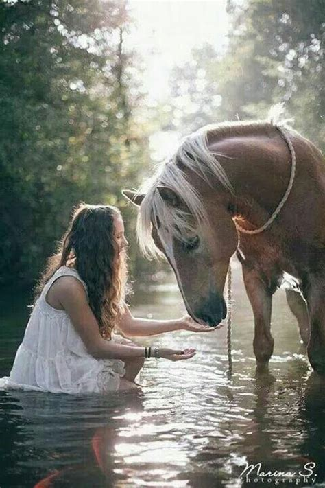 Pin by Kristy Orison on Horses and felines | Horses, Horse