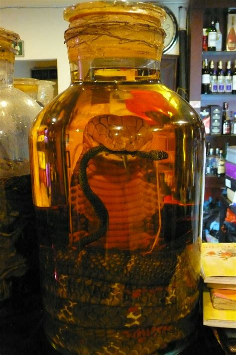 Cobra Infused Alcohol | Wow is all I can really say about