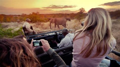 Tips For Taking Photos on an African Safari - G Adventures