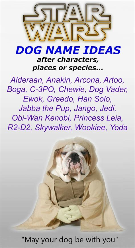 Unique Dog Names - Unusual One Of A Kind Ideas